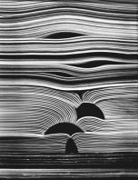 Books - Kenneth Josephson, 1988
