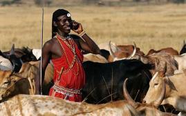 Masai phone