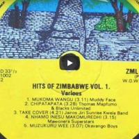 Un viaje musical por Zimbabue con Panashe Chigumadzi